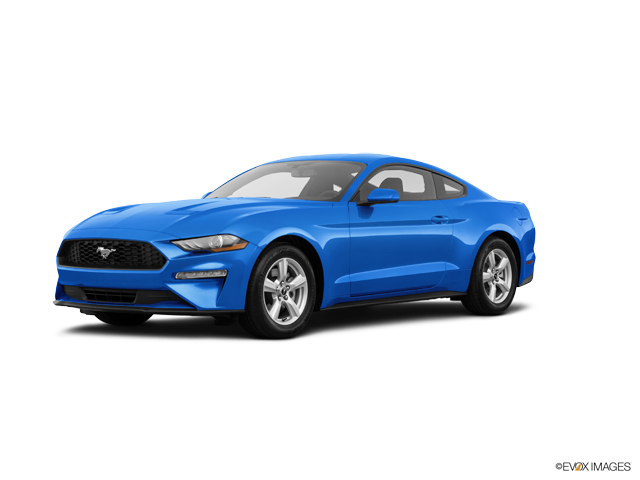 2019 Ford Mustang undefined